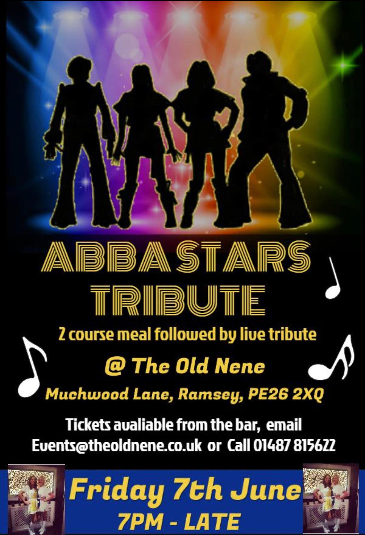 ABBA Stars Tribute Night